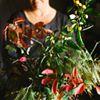 Firenza Flowers - Floral Designer
