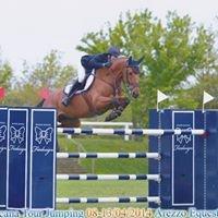 Riant Jumping Horses