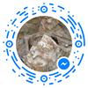Poligon Łódź-Brus. Badania archeologiczno-ekshumacyjne