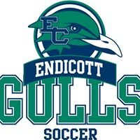 Endicott College Men's Soccer