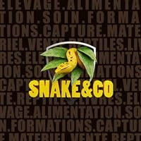 Snake & Co - Elevage privée