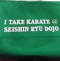 Seishin Ryu Dojo