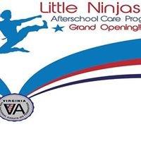 Little Ninjas Karate Summer Camp