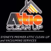 Attic Clean Up