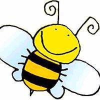 Andy Bee Designs Warrnambool