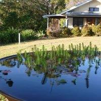Coucal Hill Eco Farm Stays