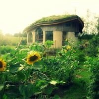 Grow Your Own Home