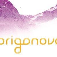 Origonova