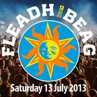 Fleadh Beag Festival 2013