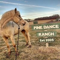 Pine Dance Ranch, Inc.