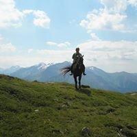Ferme equestre la Vallee des Cerfs