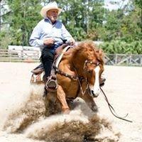 Ingram Performance Horses Inc.