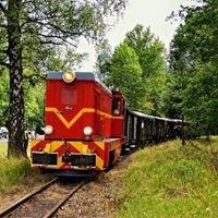 Górnośląskie Koleje Wąskotorowe