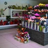 Kwiaciarnia Florencja