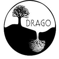 DRAGO Cultura. Energía y Salud