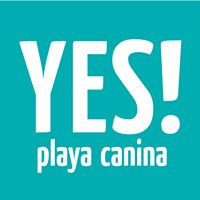 Yes Playa Canina