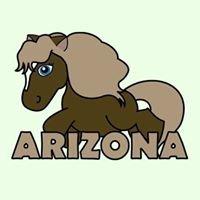 Stajnia Arizona