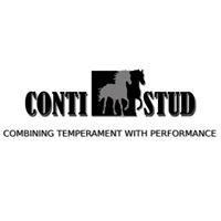 Conti Stud