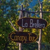 Canopy Tour La Brellera