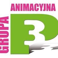 Grupa Animacyjna P3