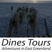 Dines Tours
