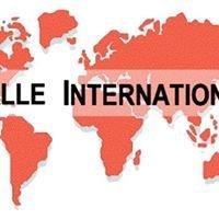 Halle International e.V.