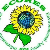 ECORES - Information Analytic Environment Agency