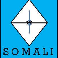 Somali Diaspora Corps