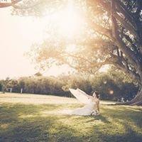 Josh Vincent Photography