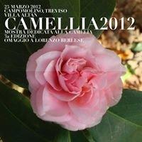 Camellia 2012