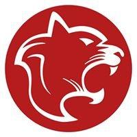 Panthera Marketing