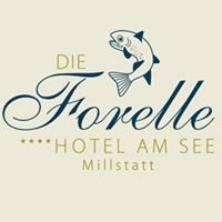 Hotel am See Die Forelle ****