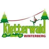 Kletterwald Winterberg