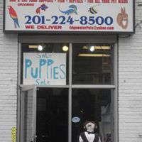 Edgewater Pets (Grooming And Boarding)
