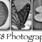 DV8 Photography