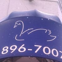 Swan Income Tax