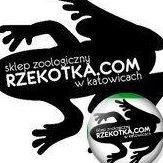 Rzekotka.com