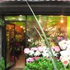 Laila's  Florist