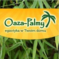 Oaza-Palmy