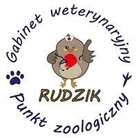 Rudzik punkt zoologiczny