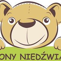 Niepubliczny Punkt Przedszkolny Zielony Niedźwiadek