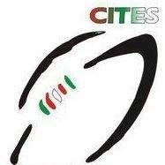 Club Italiano de Escobar Rugby Sitio Oficial