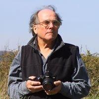 David Johnston Sussex Photography