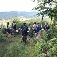 Mountainbike-Touren Sankt Englmar