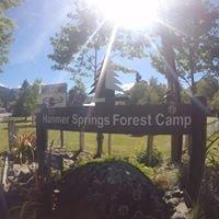 Forest Camp Hanmer Springs
