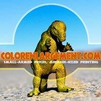 colorenlargement.com (online photo enlargements)