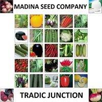 Madina Seed Company مدینہ سیڈ کمپنی