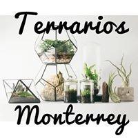 Terrarios Monterrey