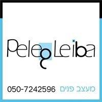 פלג לייבה - מעצב פנים  Peleg Leiba