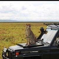 Entumoto Safari Camp, Masai Mara
